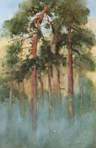 Sosny we mgle II. 40x60 cm. Kazimierz Twardowski
