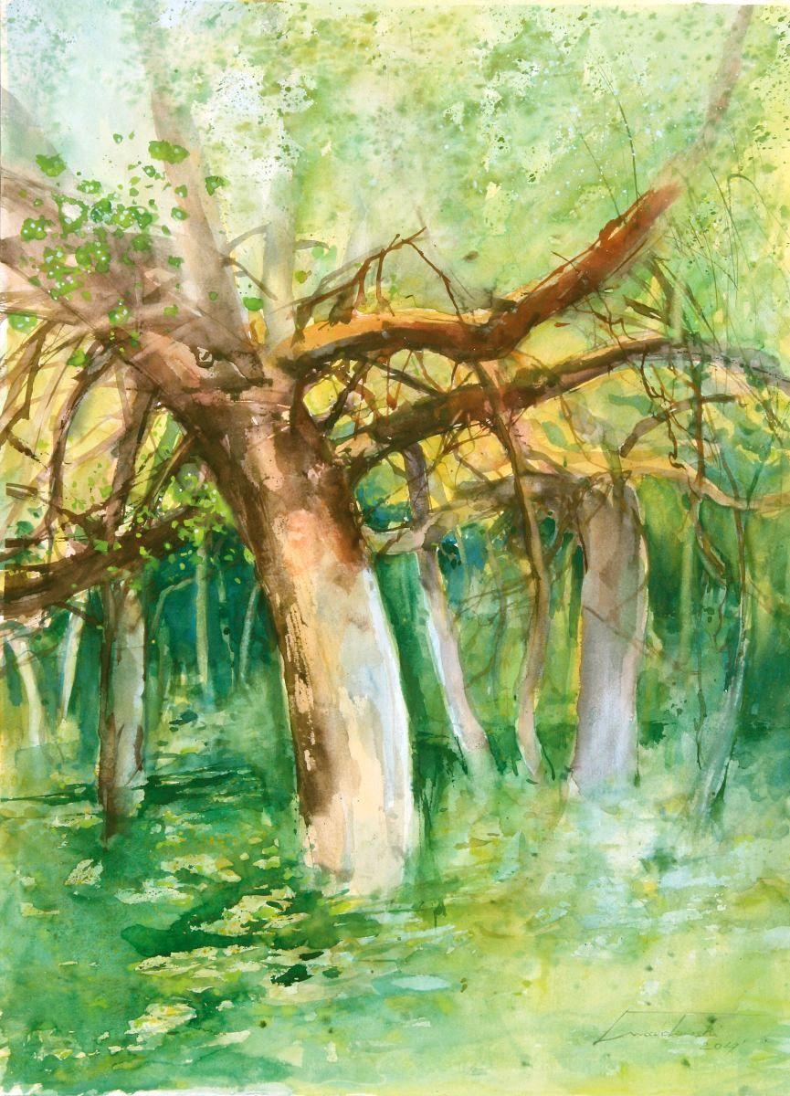 Zapomniany ogród. 56x76 cm. Kazimierz Twardowski