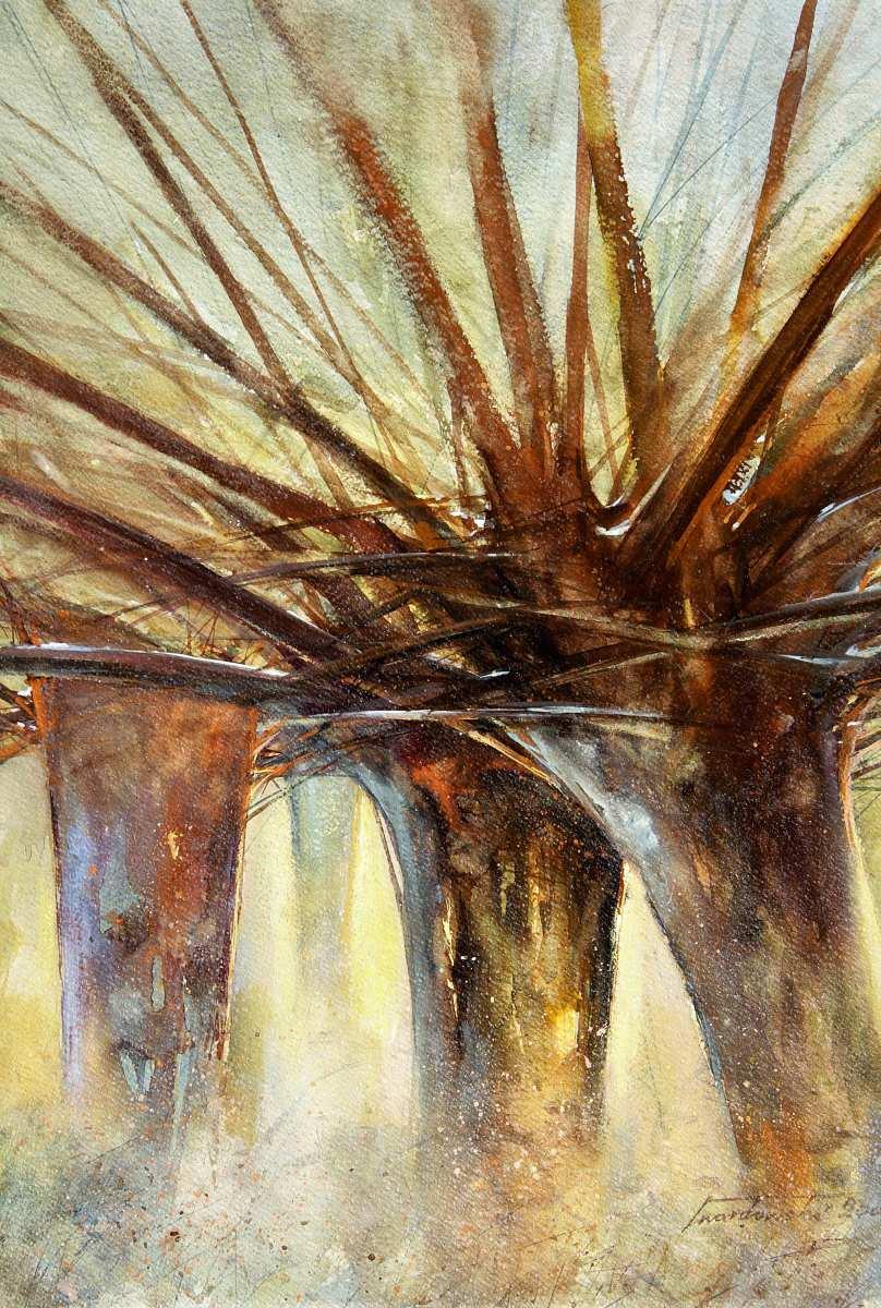 Marcowe słońce. 50 x 70 cm. 2002 r. Kazimierz Twardowski.
